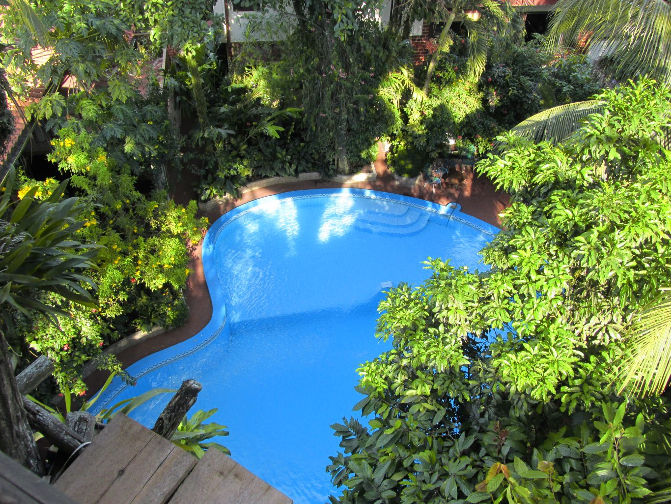 Swimming pool at La Casa Fitzcarraldo in Iquitos