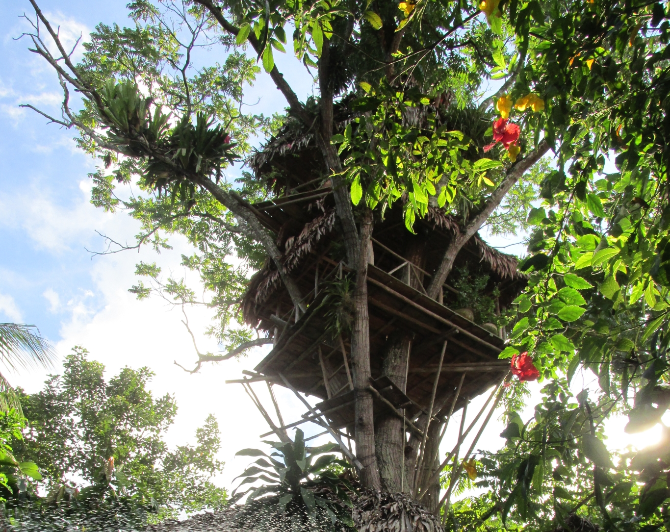 Tree house at Casa Fitzcarraldo
